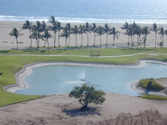 Golf course Palms by the sea