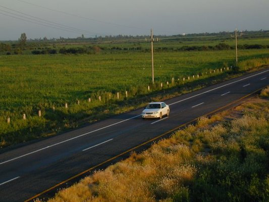 Fields Roads S of Culiacan
